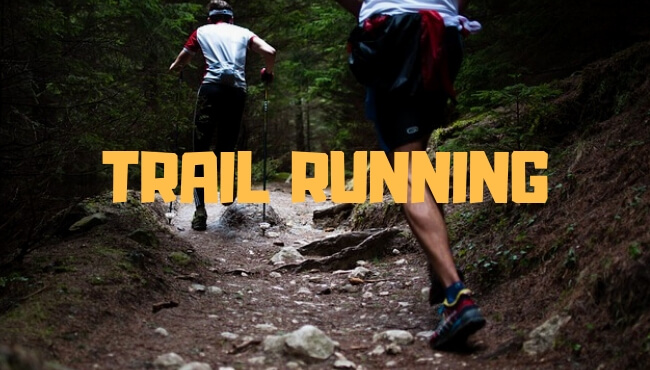 989ffc3180f Los Mejores Bastones de Trail Running【2019】